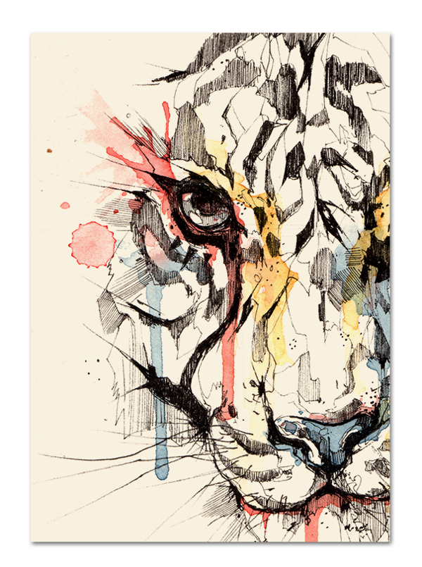 Drawing marker watercolor. Tiger by dsorder via