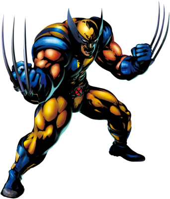Drawing marvel wolverine. Maximum sumii and video