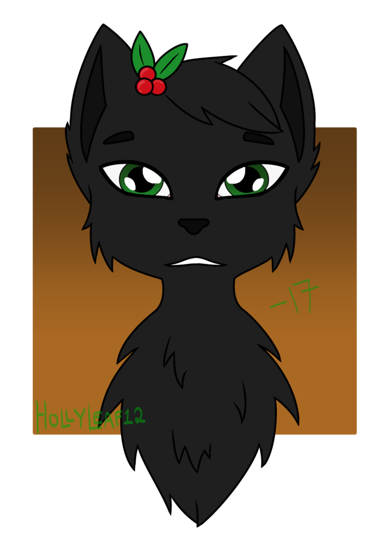 Drawing medium character. Hollyleaf by on deviantart