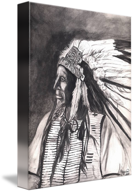 Drawing medium fine art. Native american indianchief horse