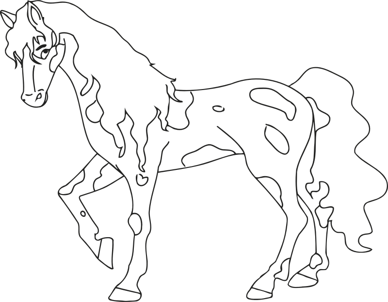 Drawing medium horse. Clipart line image png