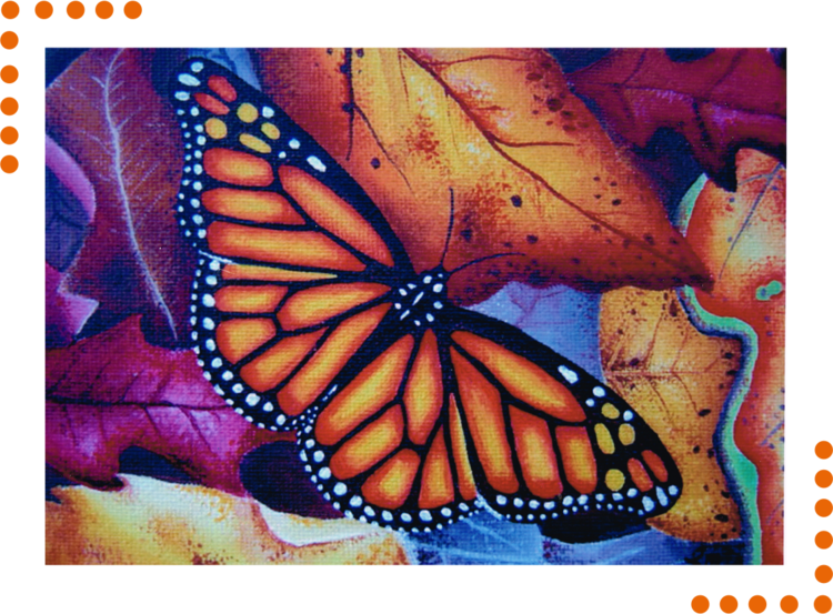 Vector laces butterfly. About elspeth mclean colored