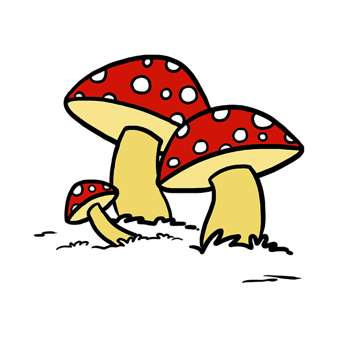 Drawing mushrooms cartoon. How to draw a