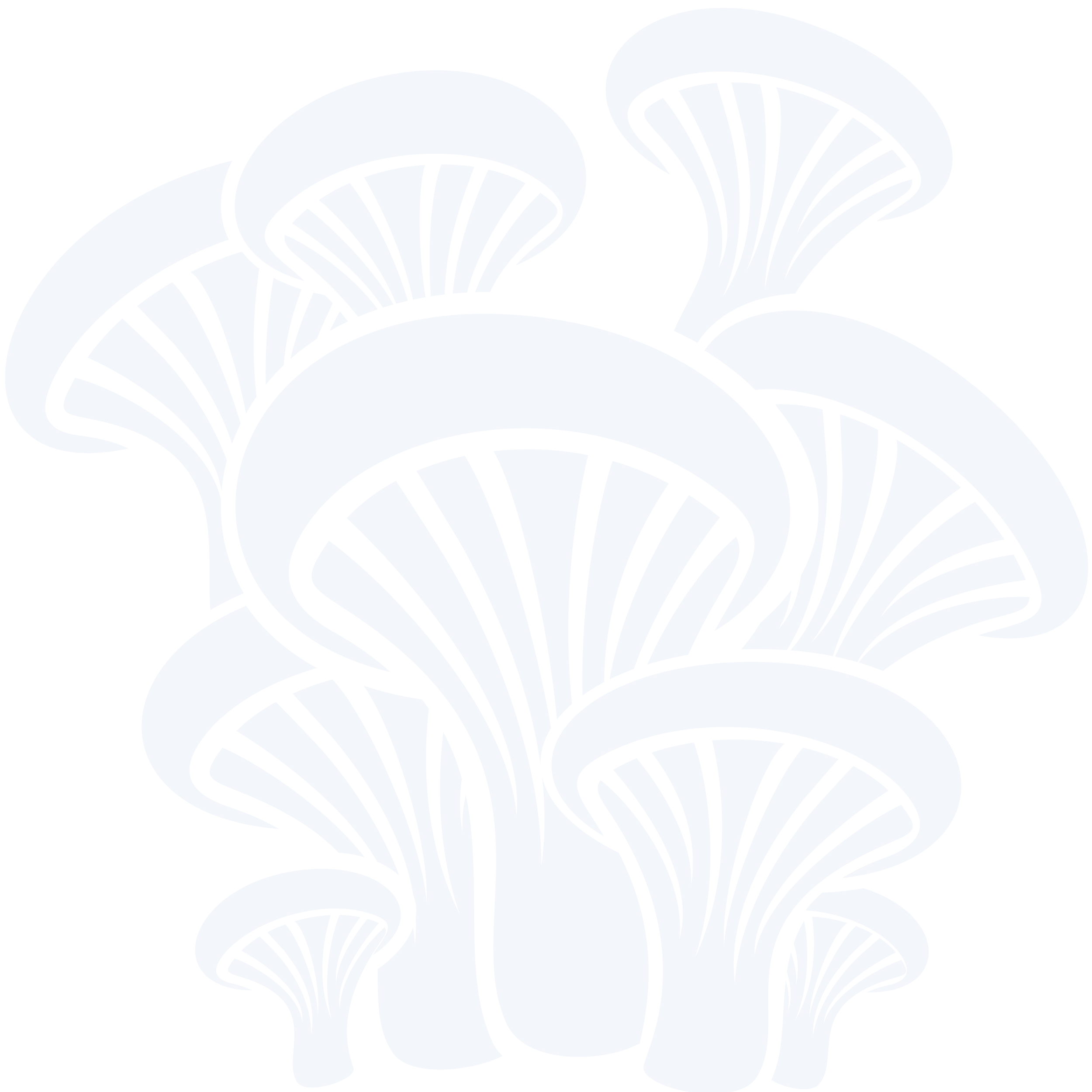 Drawing shrooms group. Resources piedmont mycological society