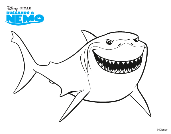 Drawing nemo shark. Bruce coloring book transprent