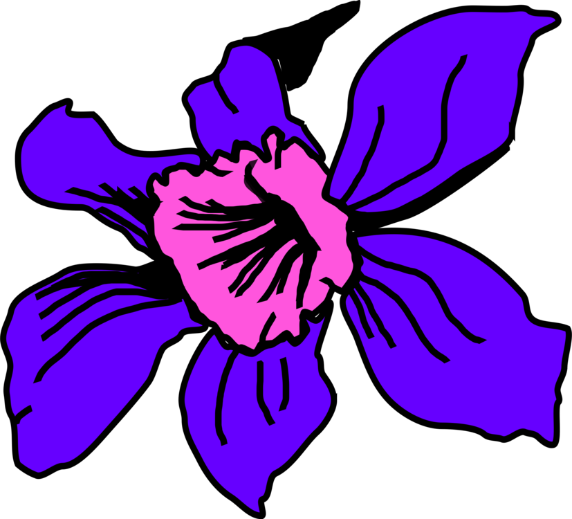 Drawing orchid flower colombian. Colombia orchids computer icons