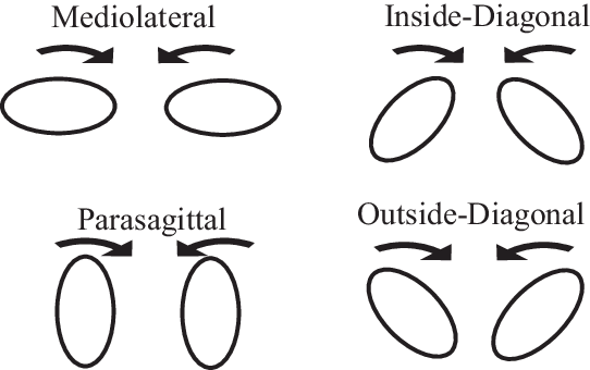 Drawing ovals symmetrical. The oval orientations used