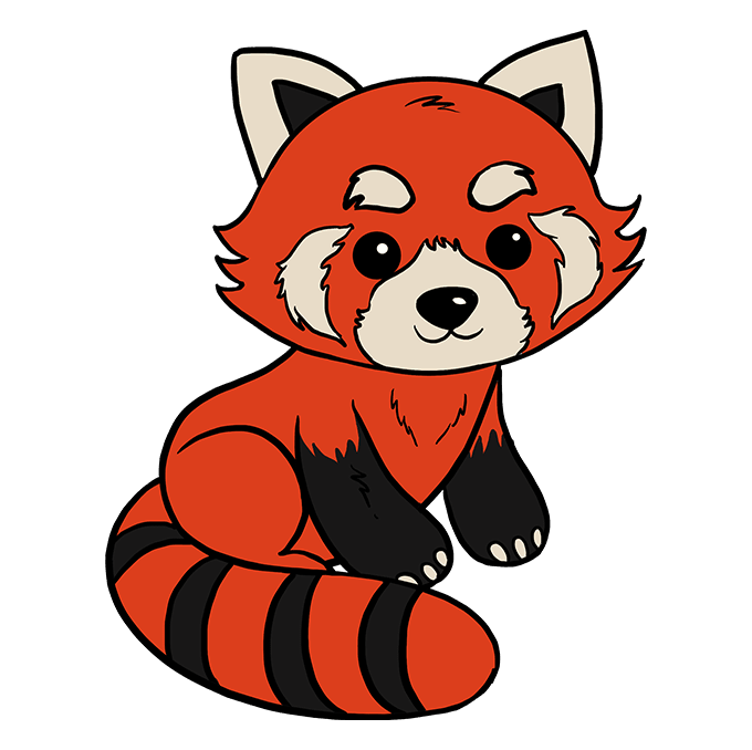 Drawing pandas red panda. How to draw a
