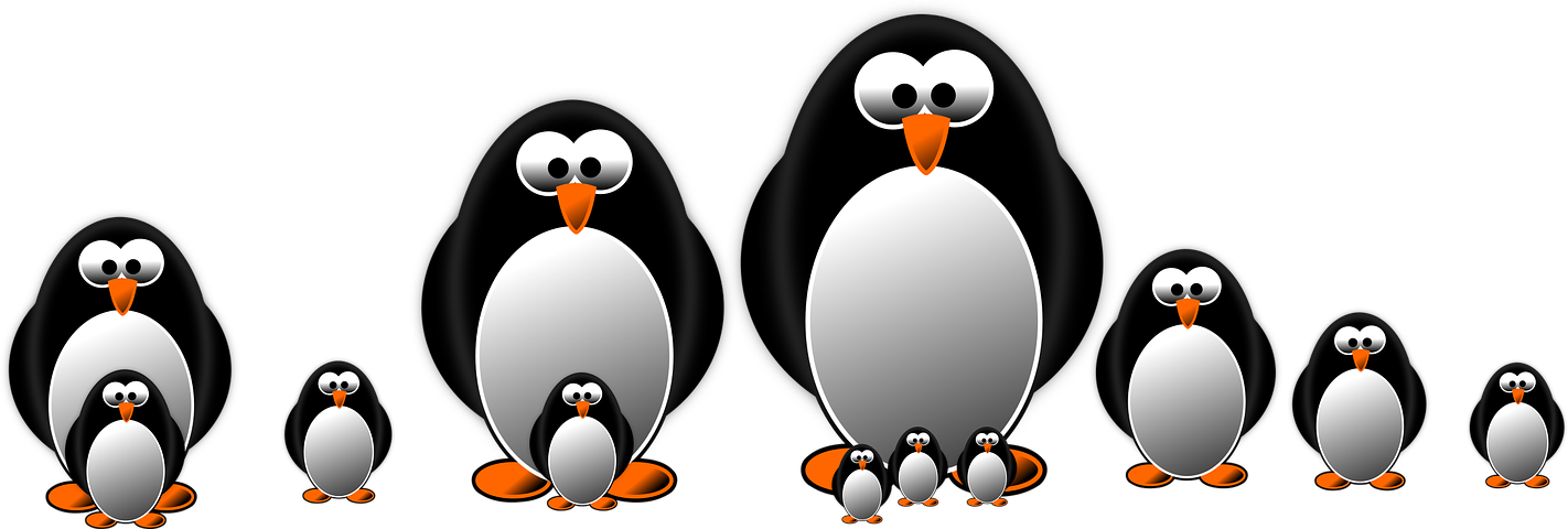 Drawing penguins graph. Penguin graphic draw drawings