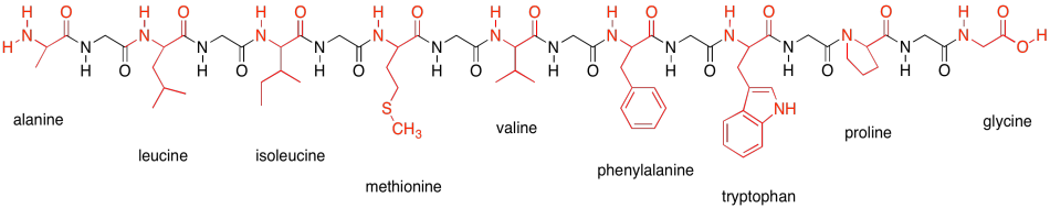 Drawing peptides amino. Mixtures they are shown