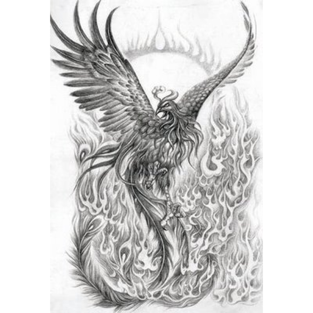 Drawing phoenix detailed. Tattoo designs for women