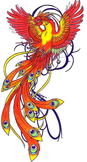 Drawing phoenix unique. Bird tattoo for women