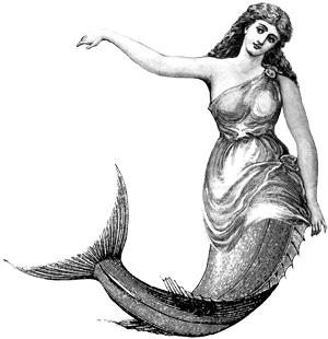 Drawing photoshop mermaid. Google search i should