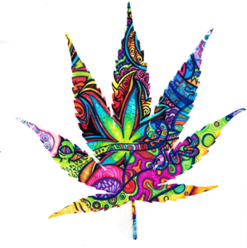 Weeds drawing life. Weed leaf colourful that