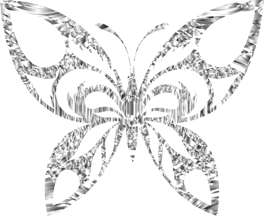 Drawing polygons butterfly. Computer icons moth animal