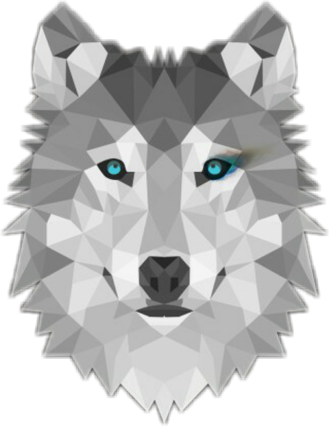Drawing polygons husky. Largest collection of free