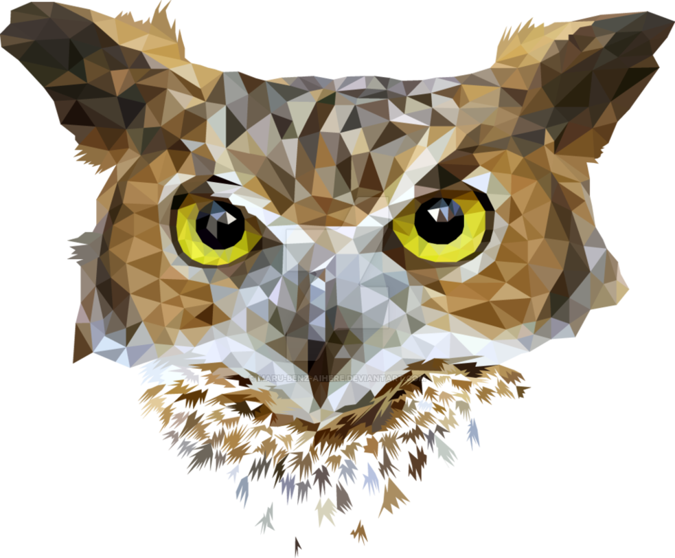 Drawing polygons owl. Pin by leann s