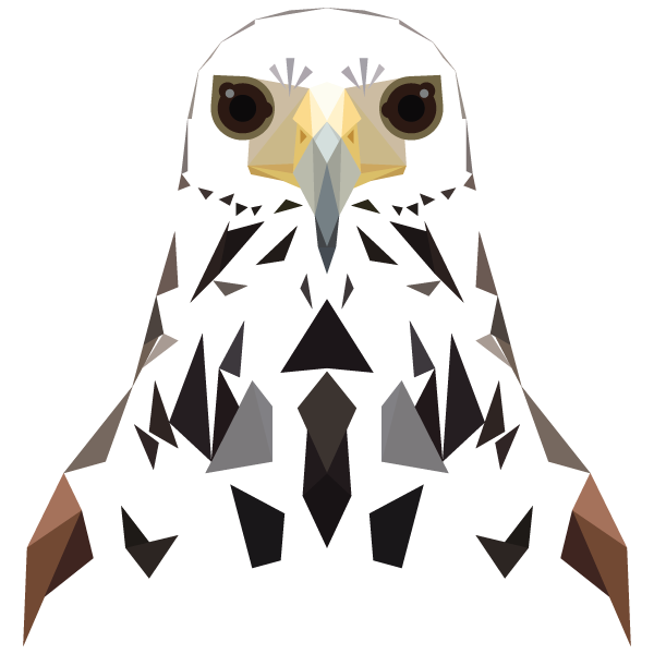 Drawing polygons owl. This whole series is