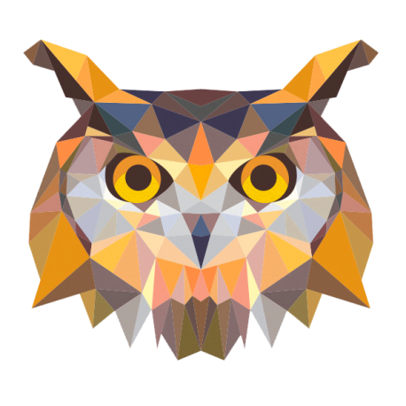 Drawing polygons owl. B ho low poly