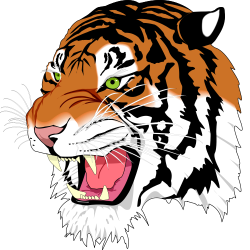 Drawing polygons tiger. Pretty shapes with svg