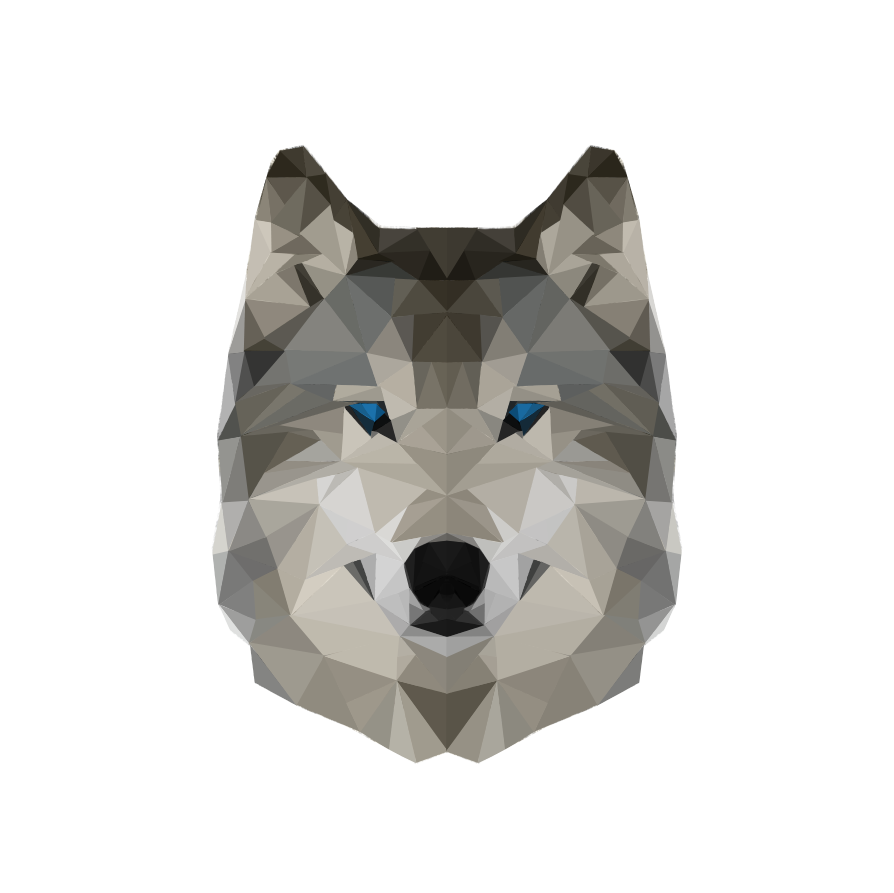 Drawing polygons wolf. Low polygon art awesome