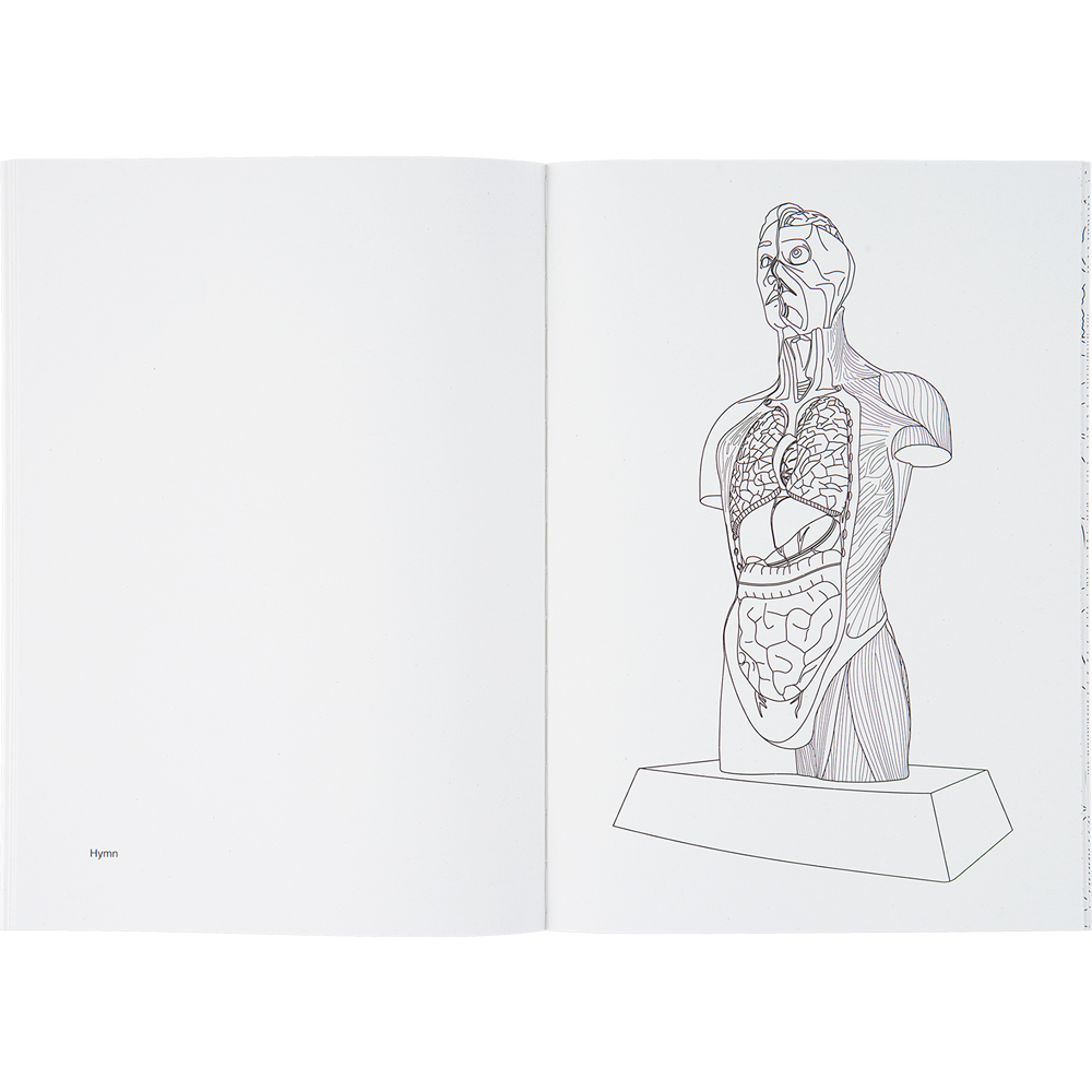 Drawing present colouring. Damien hirst book damienhirstcolouringbook