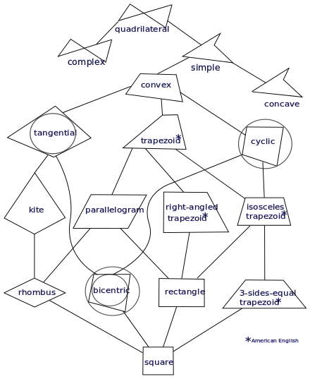 Drawing quadrilaterals concave. Quadrilateral wikiwand a taxonomy