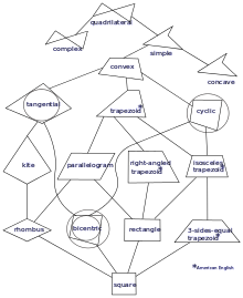 Drawing quadrilaterals taxonomy. Quadrilateral wikipedia a of