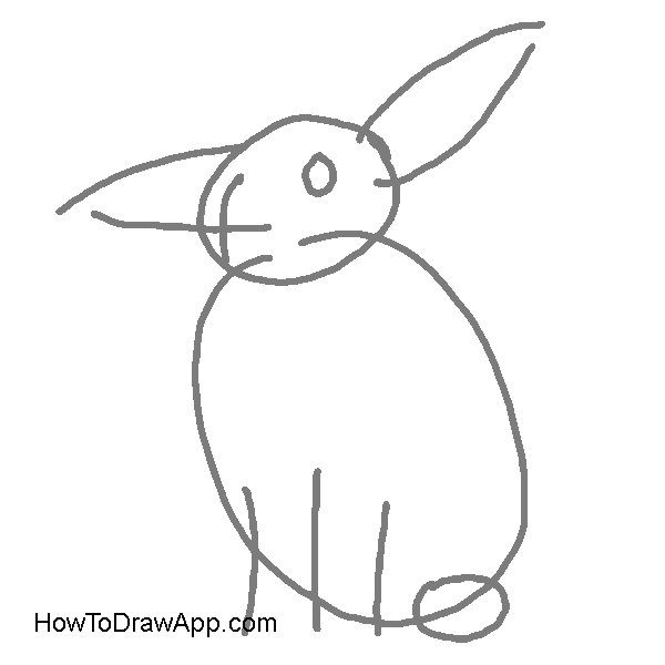Drawing rabbit. How to draw a