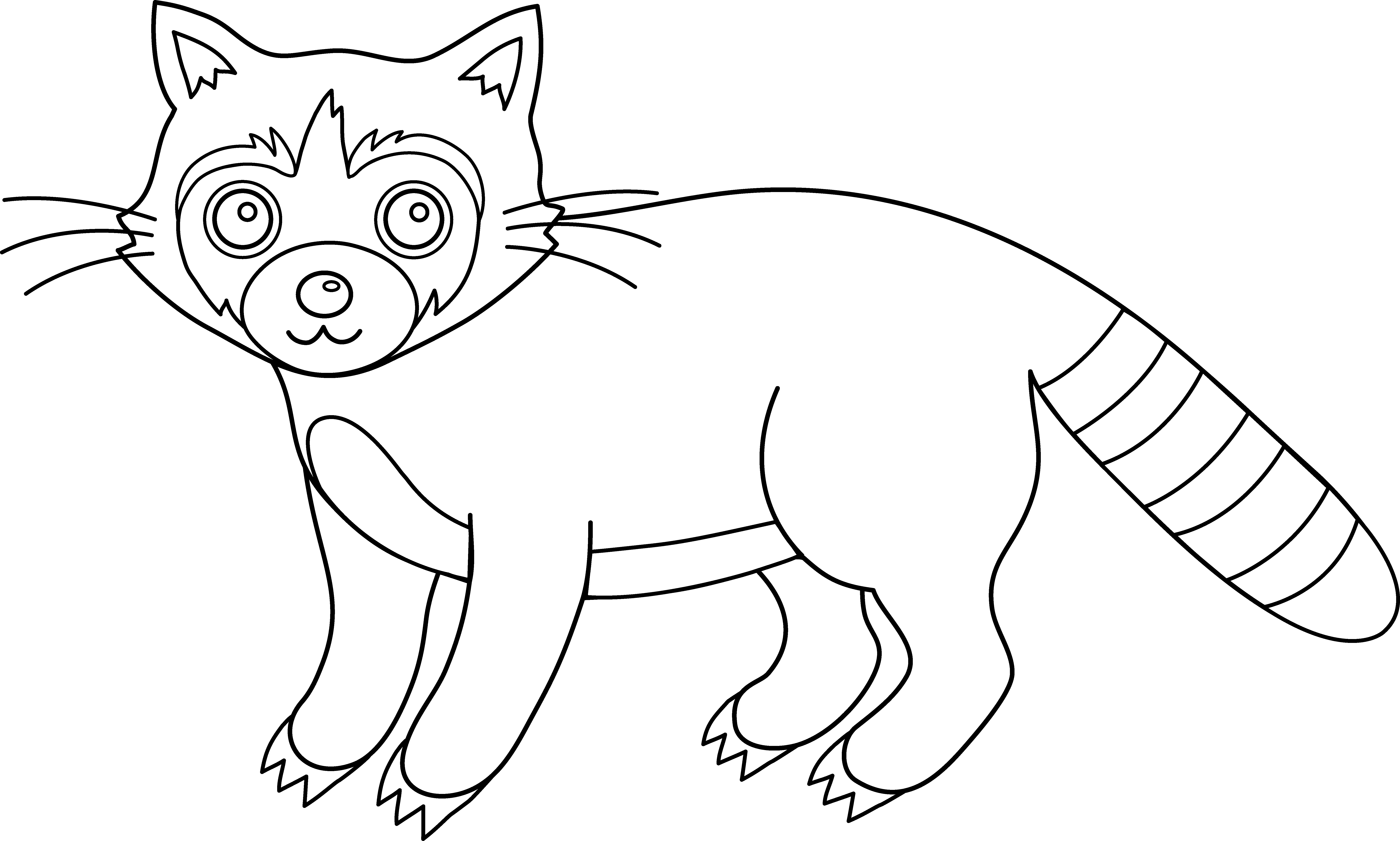 Drawing raccoon color. Colorable free clip art