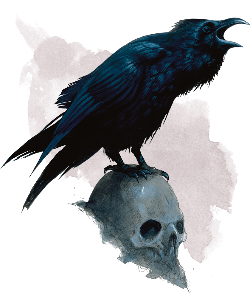 Drawing raven magical. Basic rules for dungeons