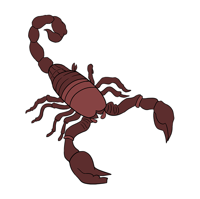 Drawing scorpion scopion. How to draw a