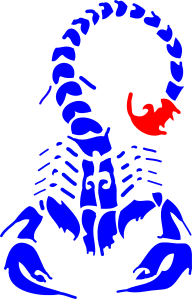 Scorpion clipart scorpion sting. At getdrawings com free
