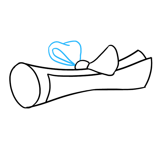 Drawing scrolls scrool. How to draw a