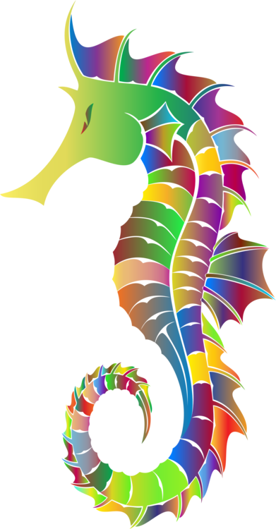 Drawing seahorse colorful. Computer icons download free
