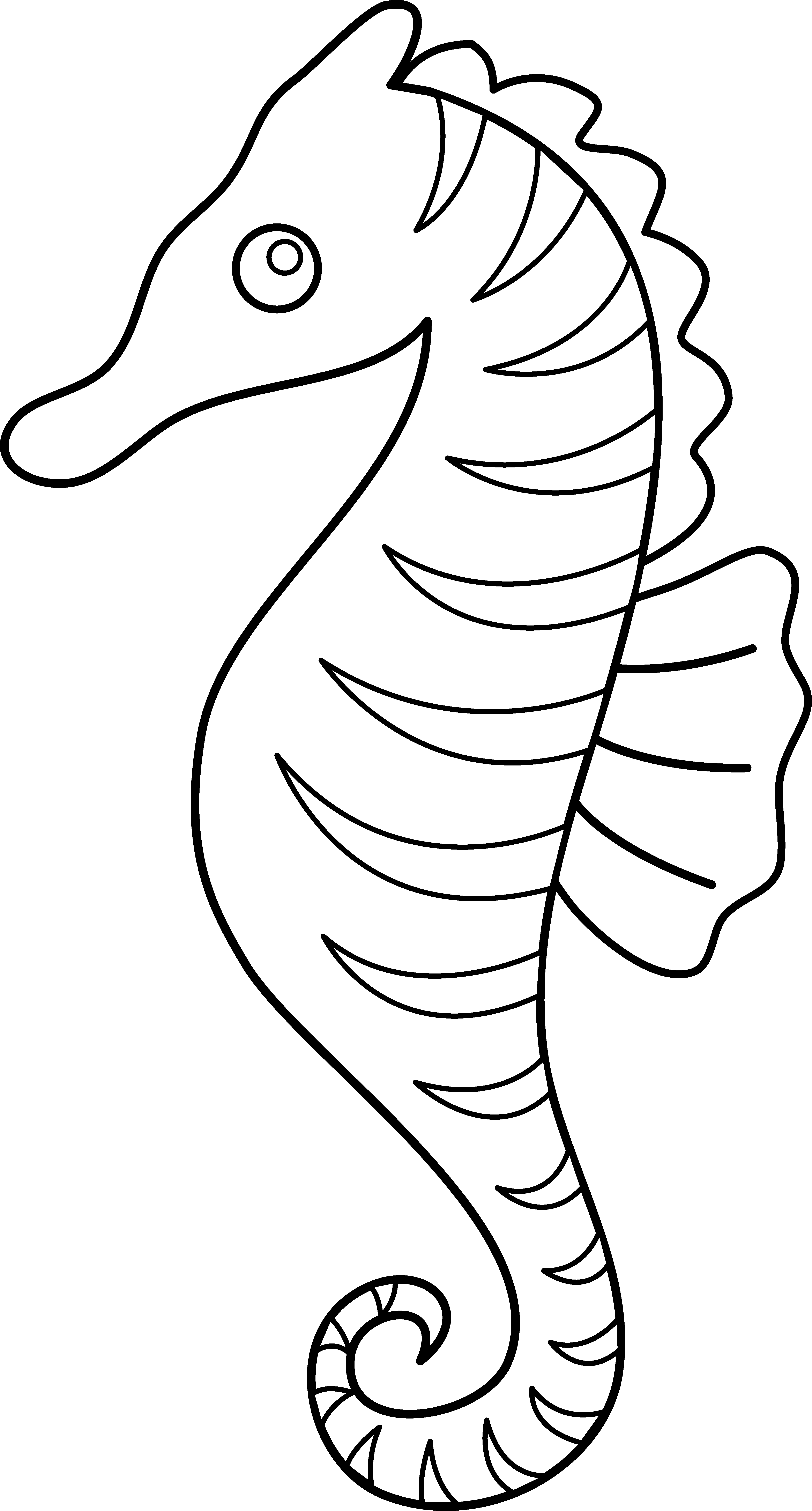 Drawing starfish seahorse. Free sea horse outline