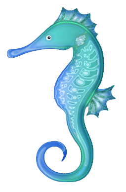 Drawing seahorse transparent background. Collection of clipart