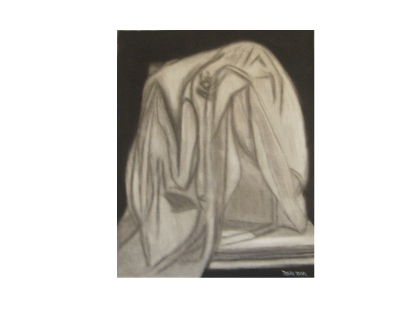 Drawing shade charcoal. Diana t observational cloth