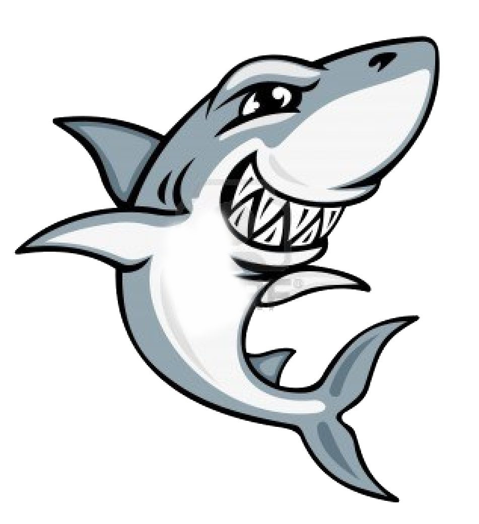 Vector sharks surfing. Collection of cute