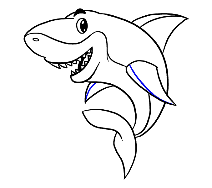 Drawing shark easy. How to draw a