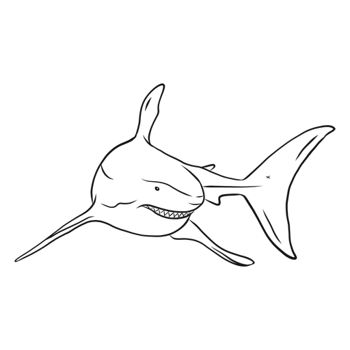 Vector sharks black and white. Shark tooth fin tail