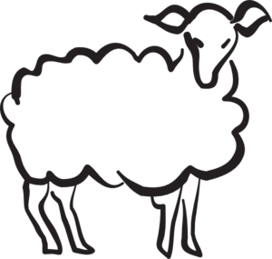 Drawing sheep. Images for at getdrawings
