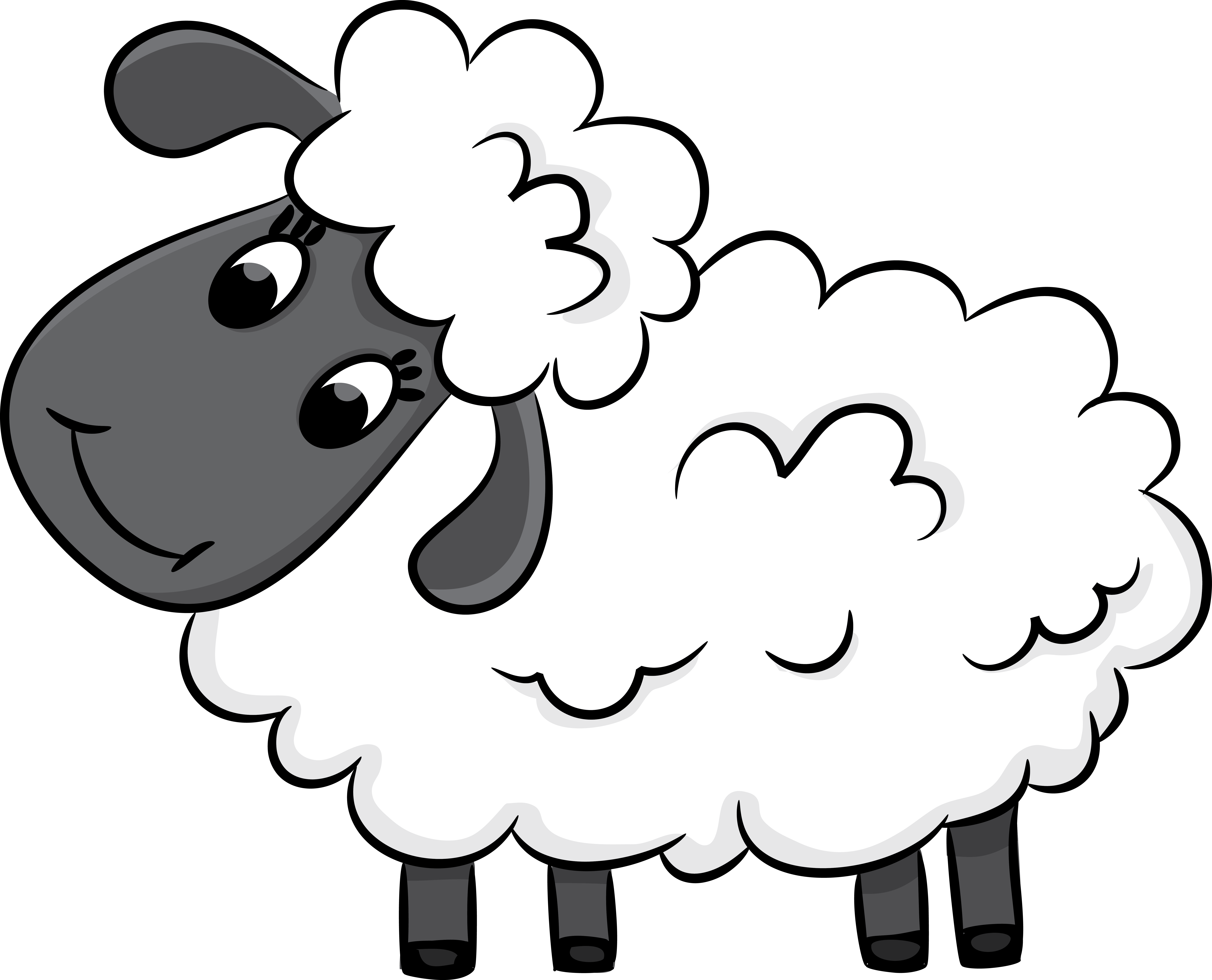 Drawing sheep fluffy. Pin by ramco lifestyles
