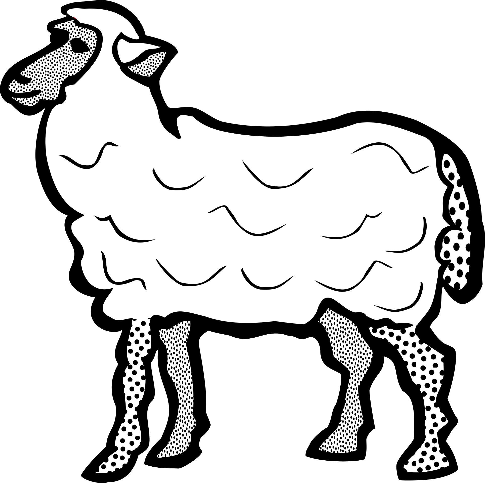 Drawing sheep farm animal. Black and white of