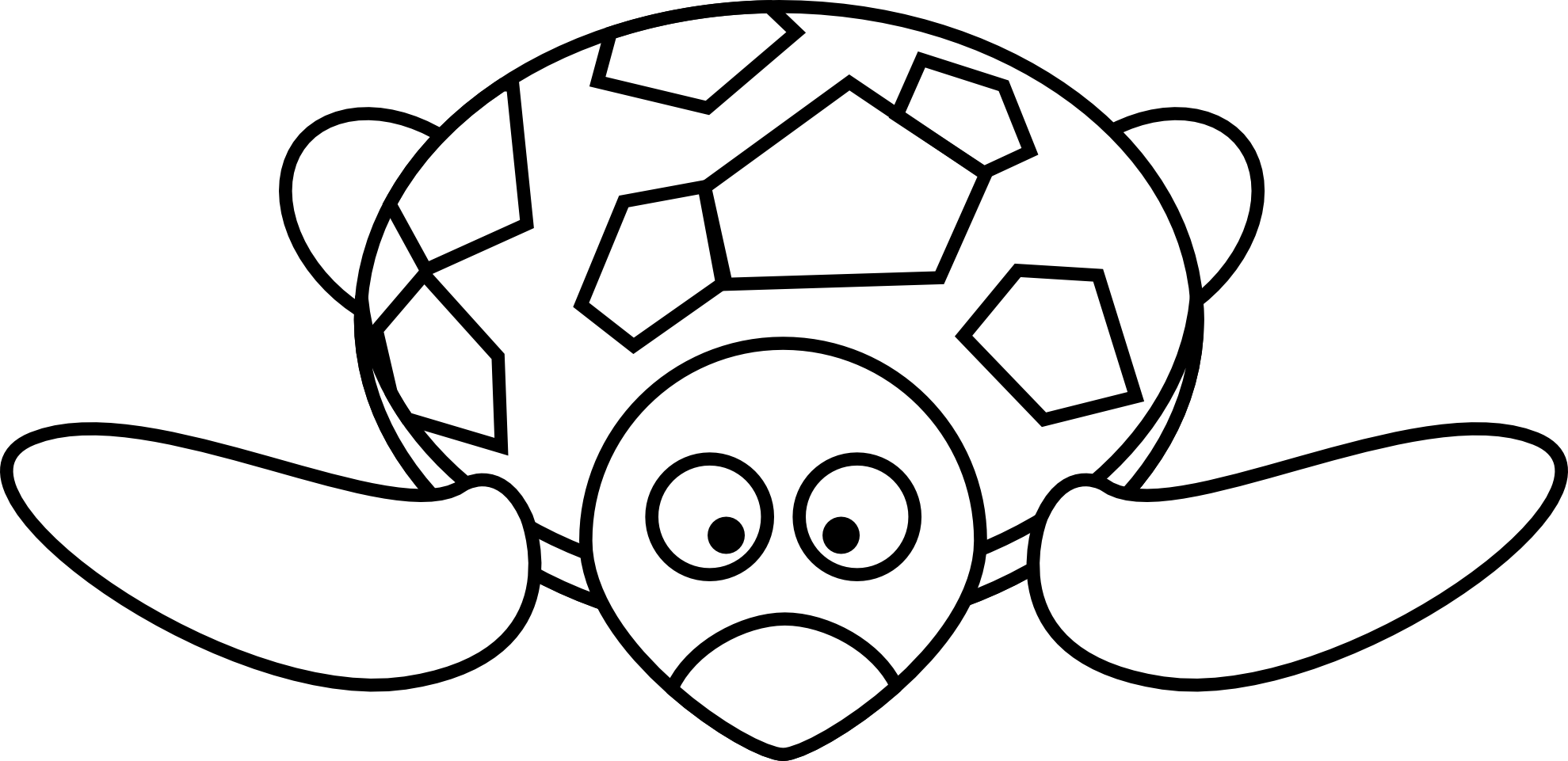 Drawing shell animated. Turtle images at getdrawings