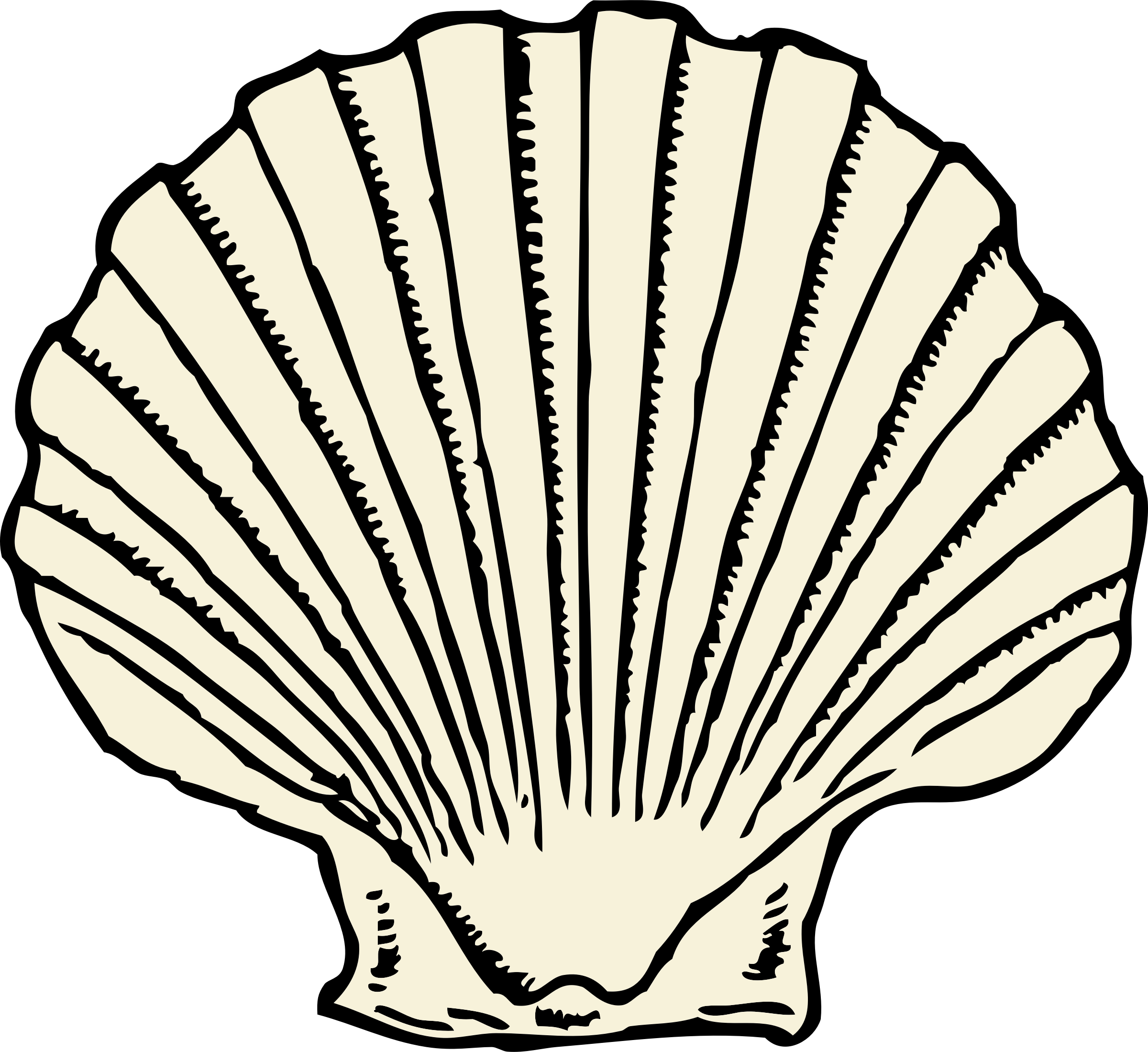 Animated Pictures Of Seashells drawing shell cartoon transparent & png clipart free