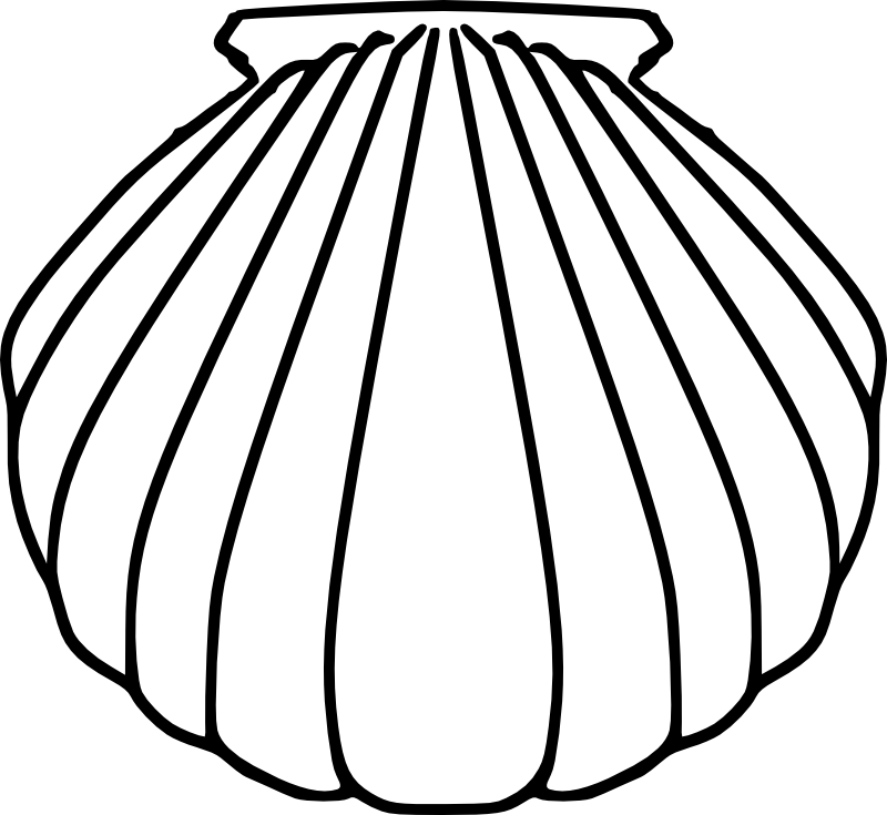 Catholic drawing symbol. Collection of shell