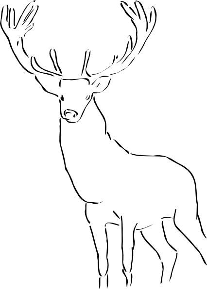 Drawing shell horn. Deer at getdrawings com