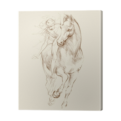 Drawing shows da vinci. Horse and rider based