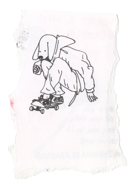 Drawing skateboard dog skateboarding